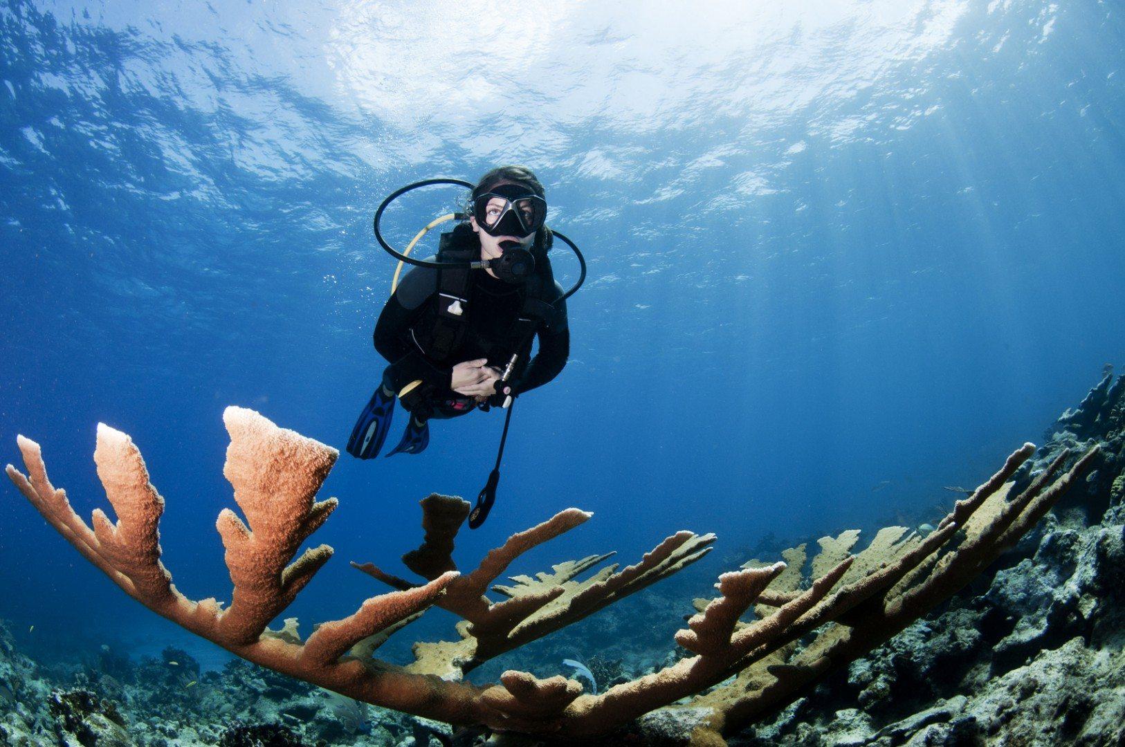 female-scuba-diver-swimming-over-coral-in-the-Caribbean-sea-000023790559_Medium