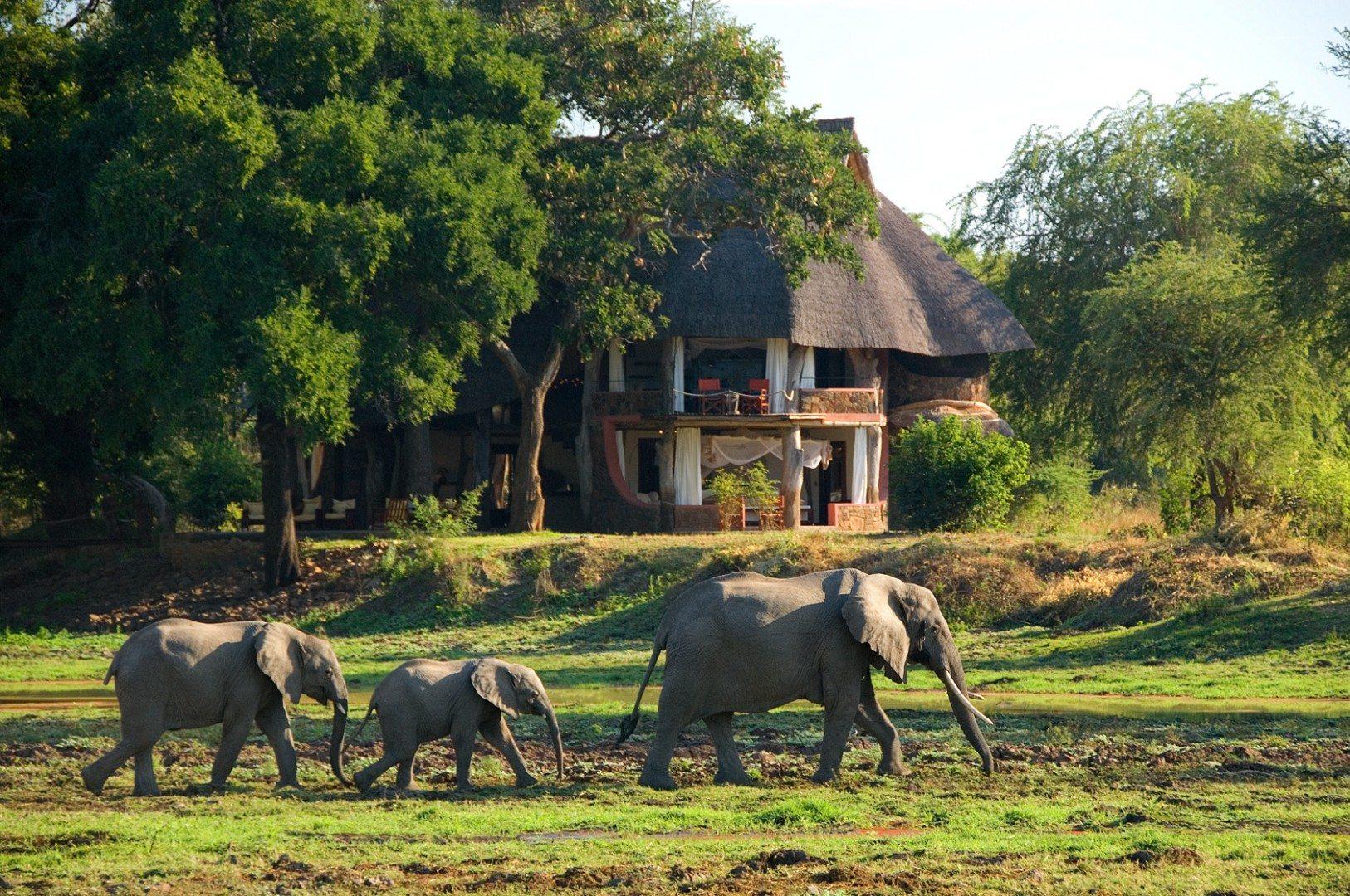 Luangwa Robin Pope Safaris