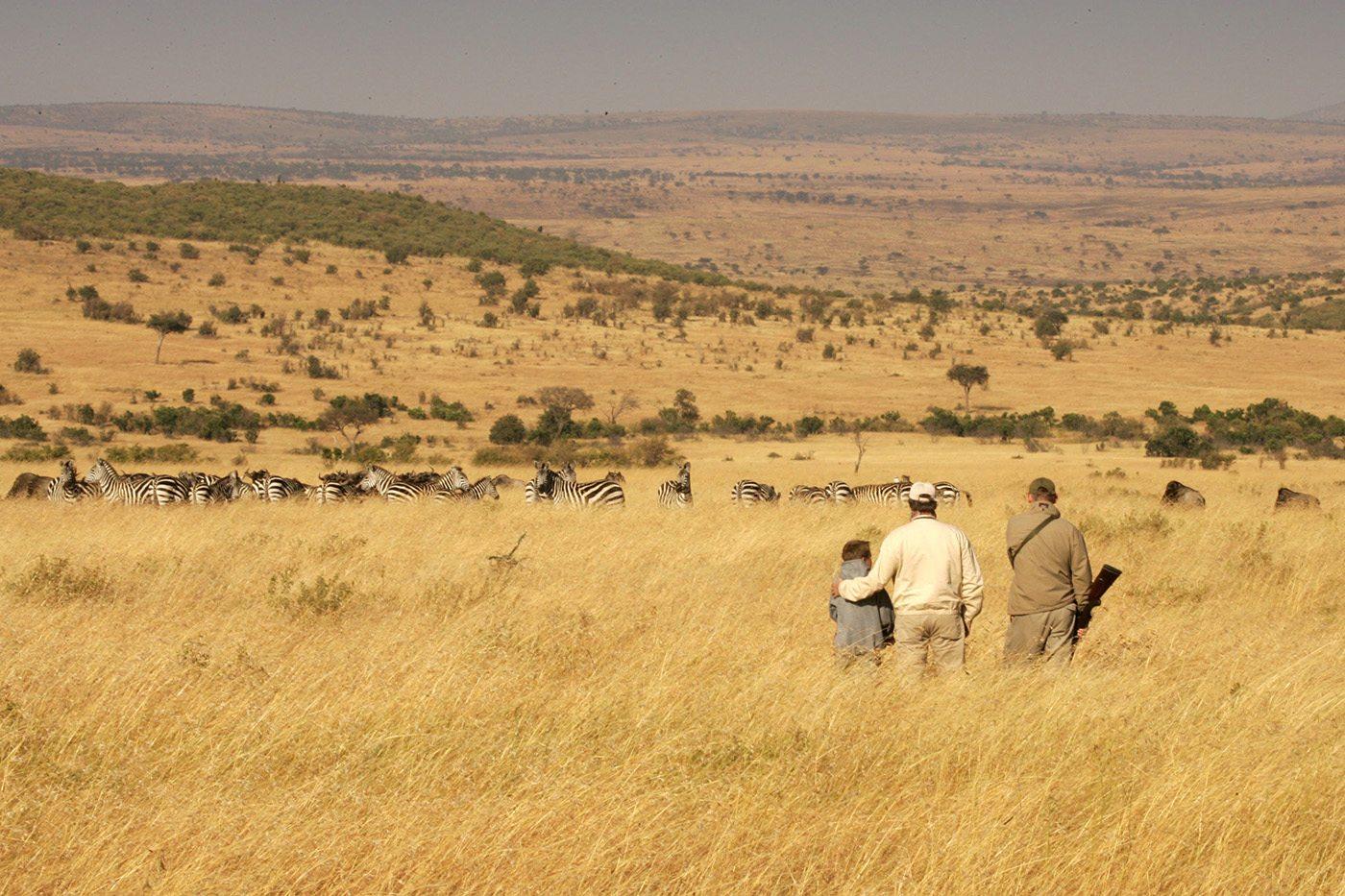 cottars-bush-walk