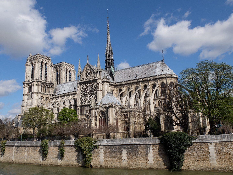 Notre-Dame-Paris-lily-heise