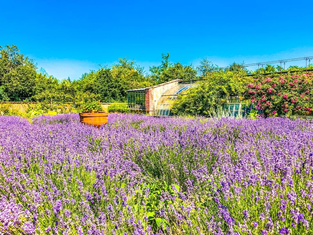 Chateau-Gardens-Upper-Loire-Barge-Lady-Cruises-UltraVilla